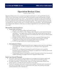 Operation <b>Broken Glass</b>