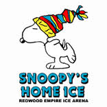 Image result for snoopy home ice