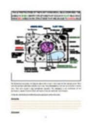Online Paper Editing Services  Hire an Editor SEC LINE Temizlik Dissertation Editing Service