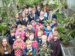 """Year One class teacher Debbie Bellinger said, """"It was lovely to see the children working together and my class really enjoyed the adventure and learnt a lot ... - orchids"""