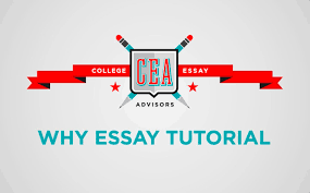 how to do admissions essay research why essays from michigan how to do admissions essay research why essays from michigan tulane and columbia college essay advisors
