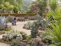 napa bungalow kitchen cactus gardens above napa bungalow fdfde ef a af ebdd cactus gardens a