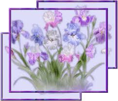 """Résultat de recherche d'images pour """"gifs defleurs d'iris"""""""