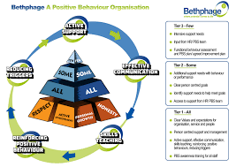 a positive behaviour organisation bethphage why is bethphage becoming a pbo