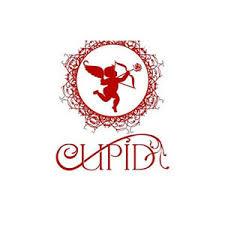 <b>Cupid</b> Perfumes <b>Cupid Black 1177</b> - купить - Альфа-парфюм