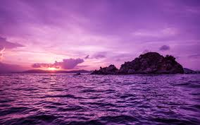 Image result for purple island