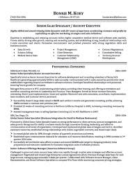 digital media resume entertainment executive resume chief digital media resume