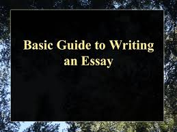 basic guide to writing an essay