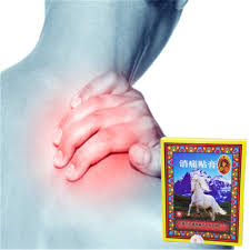 <b>DISAAR</b> 8Pcs Horse Bone Balm Pain Relief Plaster <b>Chinese</b> Herbal ...