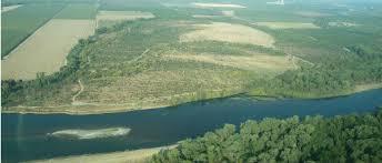 Sacramento River National Wildlife Refuge