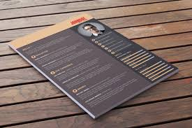 best free professional cv  resume  templates free resume template download