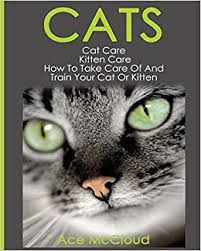 Buy Cats: Cat Care: Kitten Care: How to Take Care of and Train ...