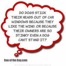 Γιατί βγάζουν το κεφάλι έξω από το αυτοκίνητο !!!