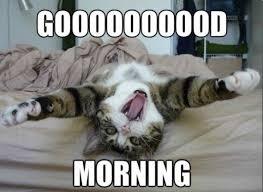 Good Morning Meme For Girlfriend | Tumblr Images via Relatably.com