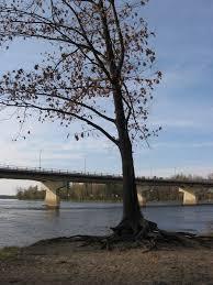 Saint-François River