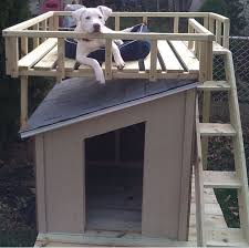Garden shed size regulations scotland  wooden shed plans do it    Simple dog house roof adirondack chair plans   lowes sheds buffalo ny   Step