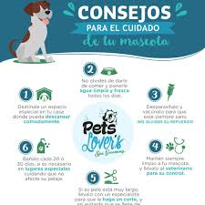<b>Pets Lover's</b> - Home   Facebook