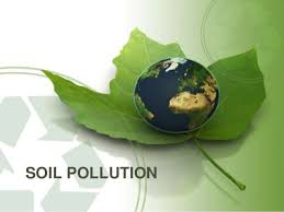 Image result for solutions to soil contamination