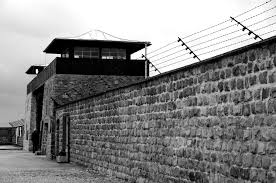 auschwitz concentration camp unknown world mauthausen concentration camp sachsenhausen concentration camp