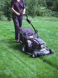 lawn mowing tips mow new grass