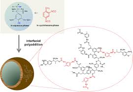Nanoparticles from renewable polymers | Chemistry - Frontiers