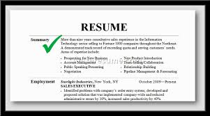 professional summary example for resume alexa resume professional summary examples for resume example of professional summary for resume
