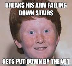 breaks his arm falling down stairs gets put down by the vet - Over ... via Relatably.com