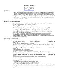 director of physical therapy resume s director lewesmr sample resume resume template sle director of