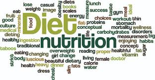 short essay on diet and nutrition