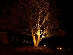 outdoor lighting in camarillo camarillo landscape lighting camarillo landscape lighting