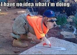 I have no idea what i'm doing - Dog Builder. | I Have No Idea What ... via Relatably.com