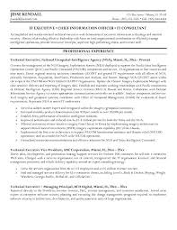 technical writer resume samples free example technical executive writing sample resume