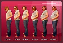Por qué 9 meses de embarazo