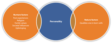 human relations personality and attitude effects examples of values