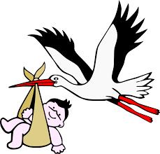 Image result for stork gif
