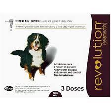 Image result for prescription flea treatments