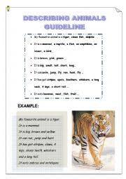 describe your favourite animal essay   essay for you  describe your favourite animal essay   image