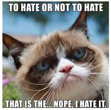 Funny grumpy cat meme | Funny Dirty Adult Jokes, Memes & Pictures via Relatably.com