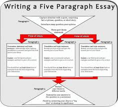 essay cheat five paragraph essay cheat sheet   essay topics cheat sheet for  paragraph essay mr brunken