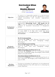 professional write professional resume template of write professional resume