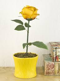 "Композиция <b>декоративная</b> (с подсветкой) ""Чайная роза"" <b>ENS</b> ..."