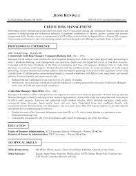 finance resume template   job resume    accounting resume template sample