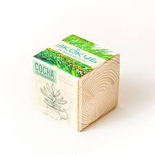 Экокуб <b>Сосна</b> обыкновенная - купить набор для выращивания ...