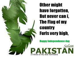 Salaam Pakistan Happy Independence Day | Inspiring Quotes ... via Relatably.com