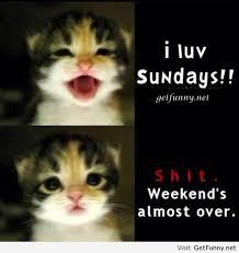 Happy Sunday Funny Quotes. QuotesGram via Relatably.com