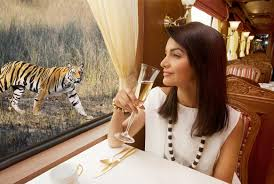 Image result for articles on irctc tiger express