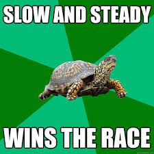 Slow and steady wins the race - Torrenting Turtle - quickmeme via Relatably.com