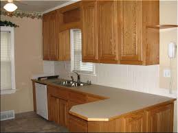 Modular Kitchen In Small Space Kitchen Room 2018 Amusing Built In Kitchen For Small Space With