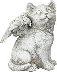Cat Angel - Amazon.com