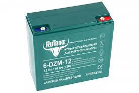 <b>Тяговый гелевый аккумулятор RuTrike</b> 6-DZM-12 (12V12A/H C2 ...